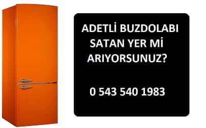 ADETLİ BUZDOLABI ALANLAR